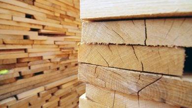 چوب نرم